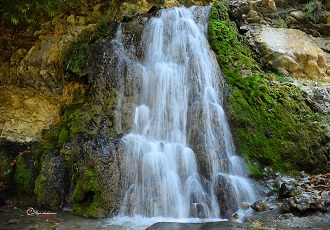 Amazing nature watching tour to Iran
