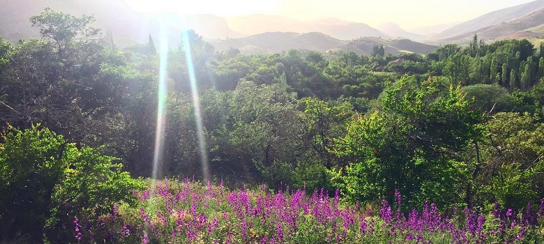 nature tour in Iran