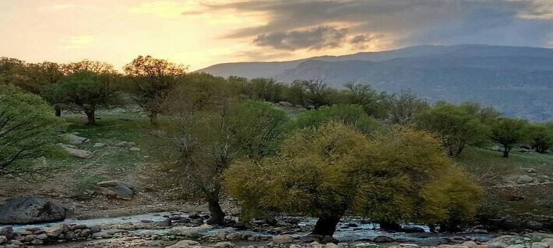 best Iran nature watching tour