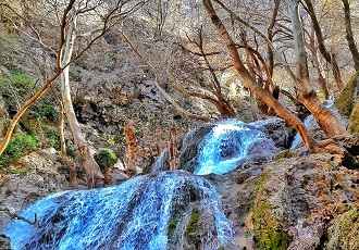 Tour to Lost Paradise, Best Iran nature guided tour