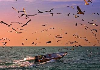 Iran sea tour