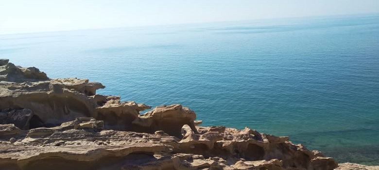 best persian gulf cruise excursion tour