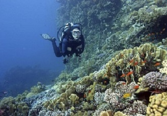 The Best Scuba Diving in Iran, Best Scuba Diving Destination in Iran