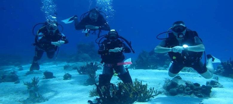 Best scuba diving in Iran