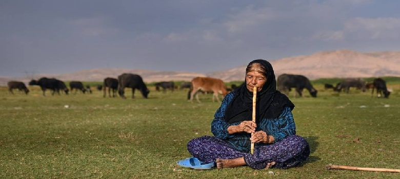 Nomadic Tribes in Iran