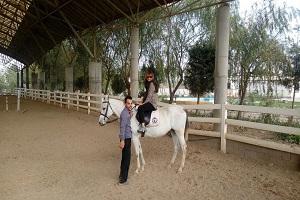 Expérience incroyable en équitation