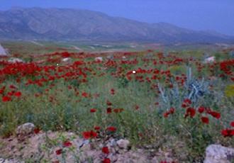 Khani Strait in Darengoon Village