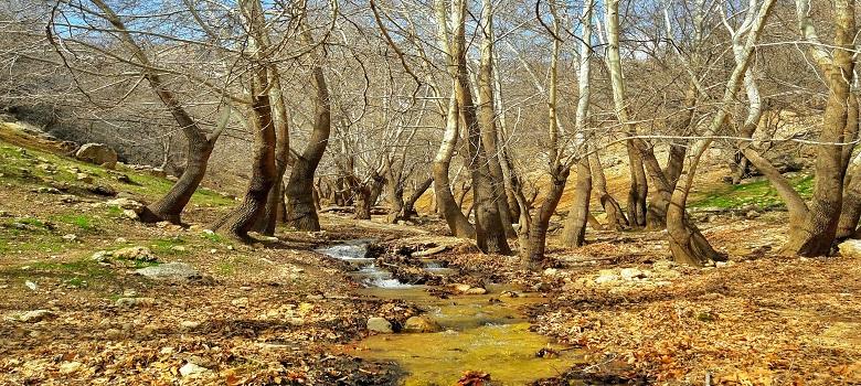 Randonnées a la nature d'Iran a la region du province Fars, paradis perdu