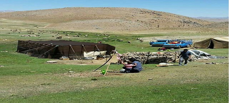 Stay with Iranian Nomads-Yeilagh