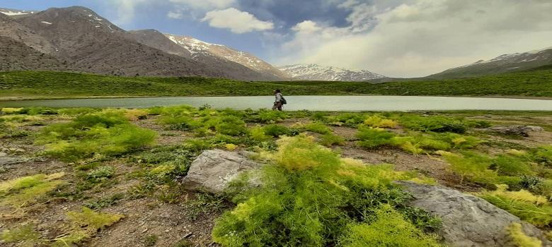 Region de Padena a la Montagne de Zagros